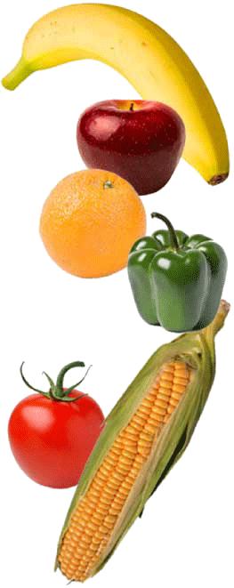 fruit veggie montage